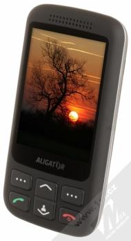 ALIGATOR VS900 SENIOR černá stříbrná (black silver) šikmo zepředu
